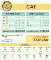 Cat Costs