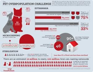 Infographics-111011